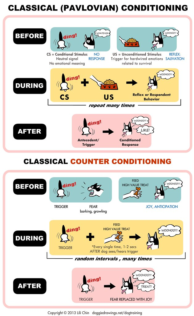 Classical Conditioning - Creating good feelings about things 1