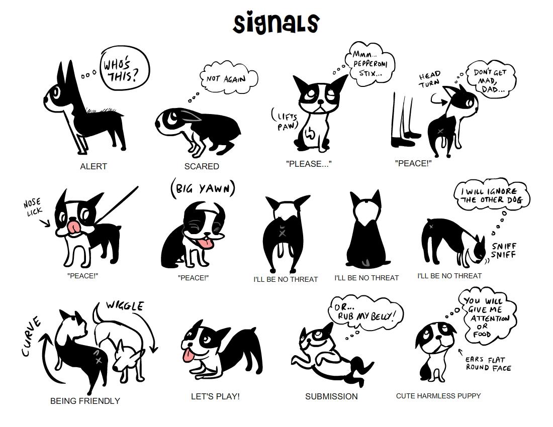 Dog Body Language 2