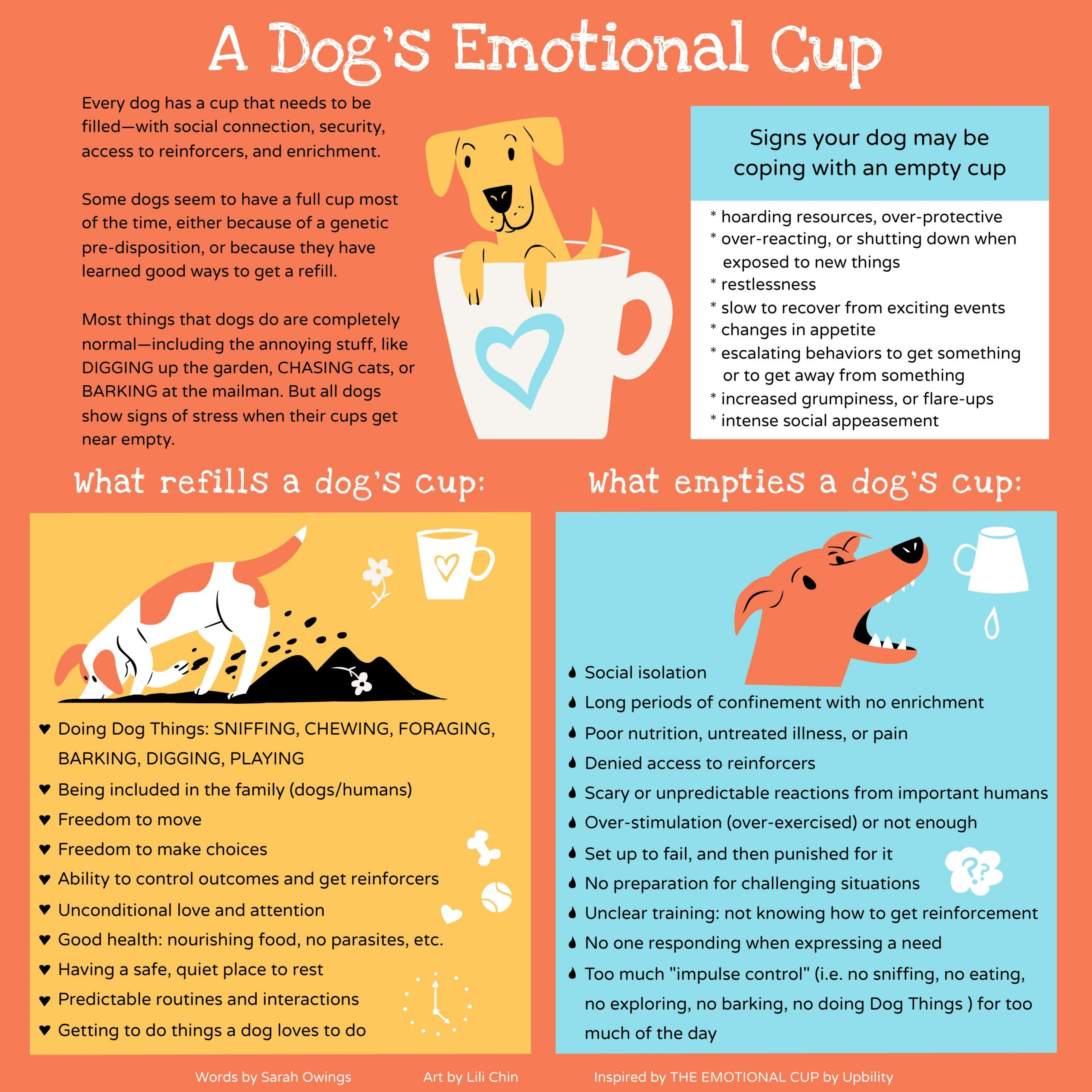Filling Your Dog's Emotional Cup 1