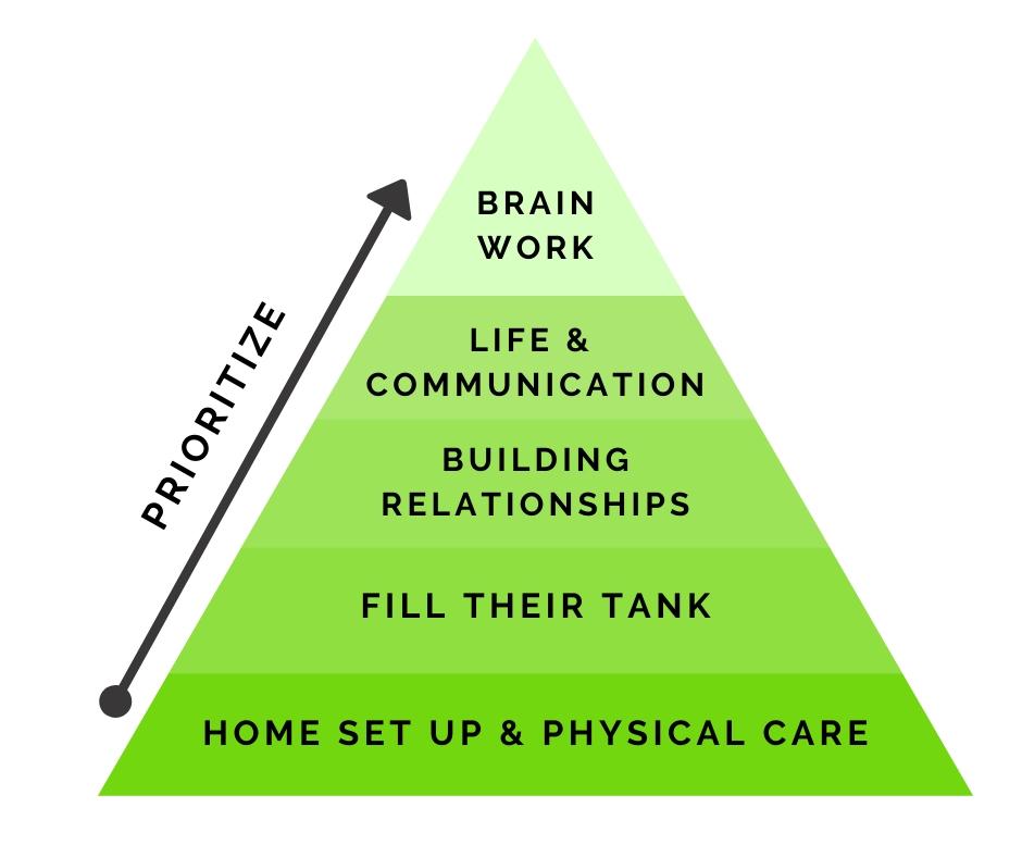 Five Key Categories 1