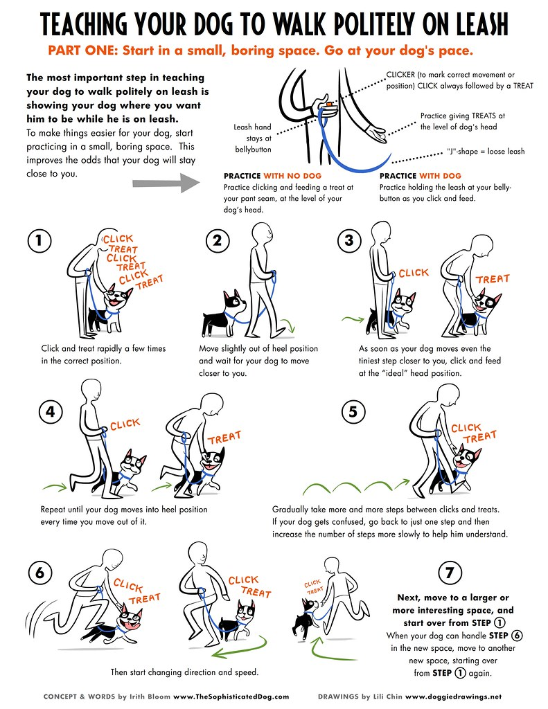 Polite Leash Walking Poster 1