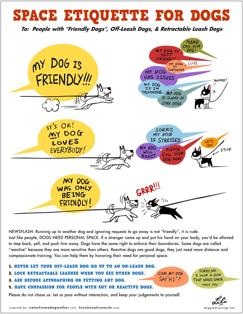 Space Etiquette For Dogs 1