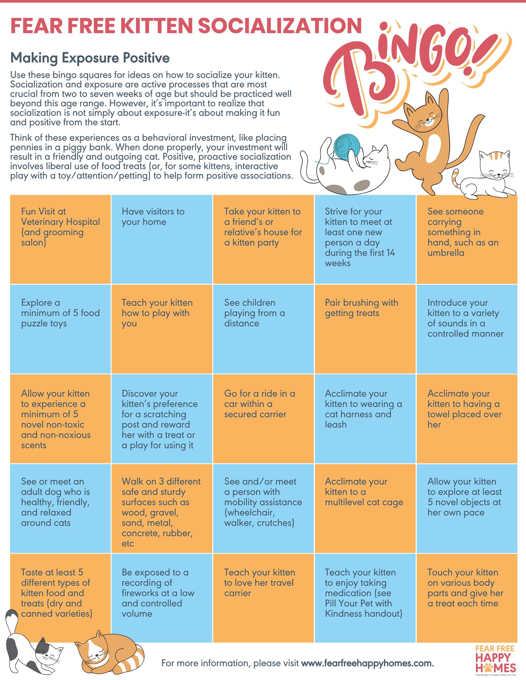 Kitten Socialization Bingo 1