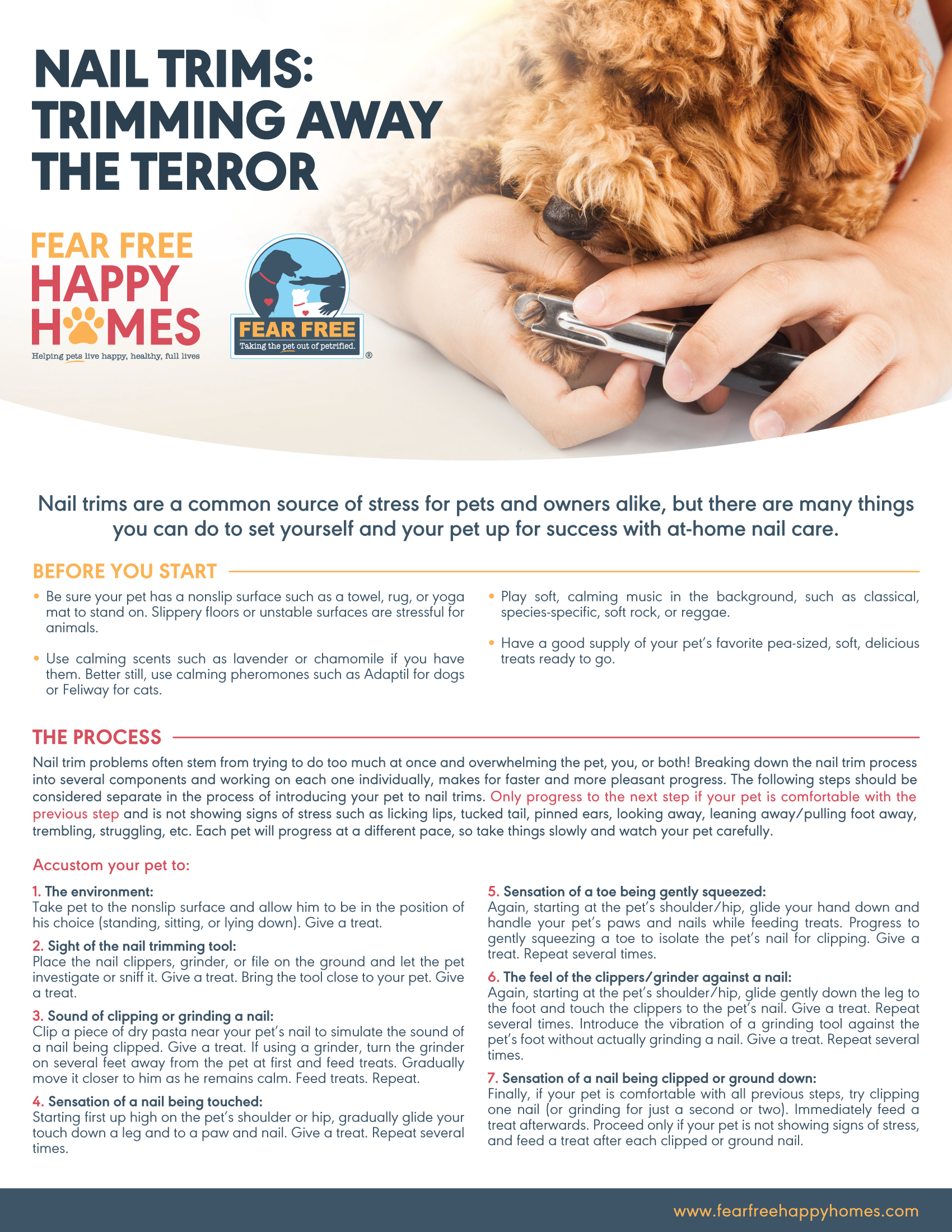 Nail Trims without Terror 1