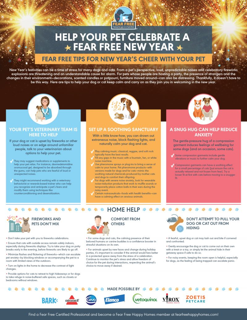 Help Your Pet Celebrate a Fear Free New Edited