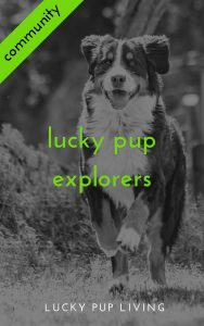 cover image for lucky pup explorers community